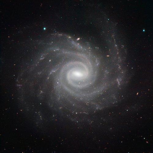 Galaxia NGC 1232